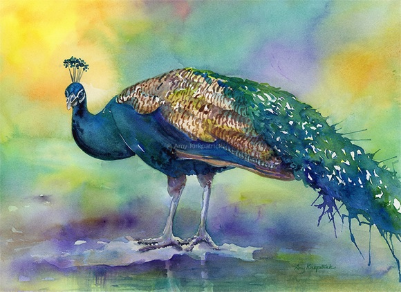 Art to License + Buy | Amy Kirkpatrick | Peacocks